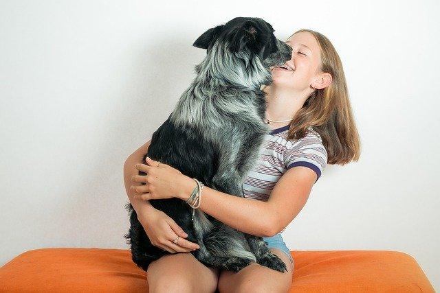 perro lamiendo a una niña