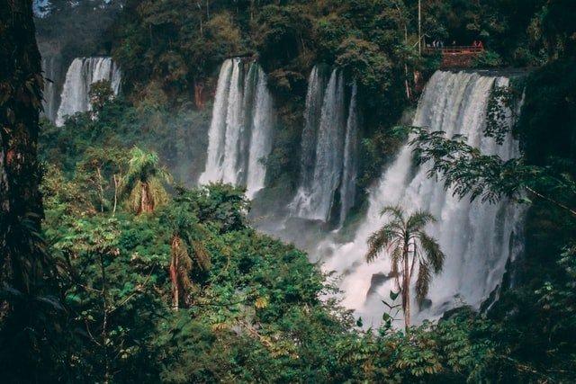 cascadas en medio de la selva en Argentina