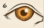 ojo normal marrón
