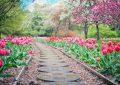 jardín con paseo