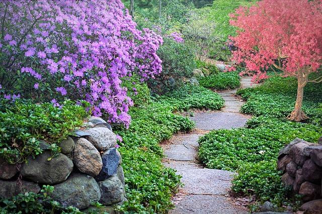 la combinación de colores entre árboles y plantas: aspecto clave en la jardinería paisajística