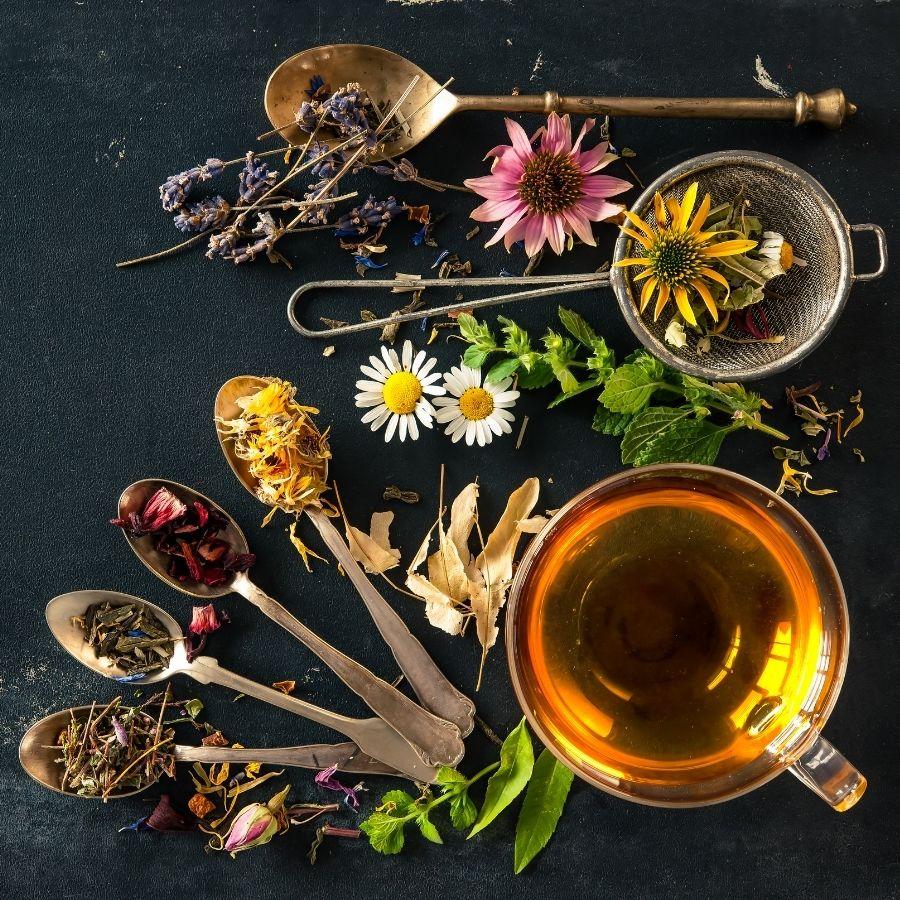 surtido de tés variados