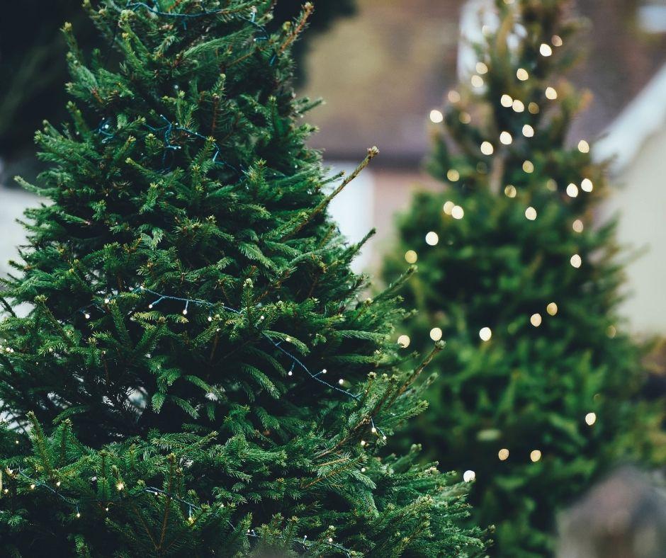 árbol de navidad con luces led